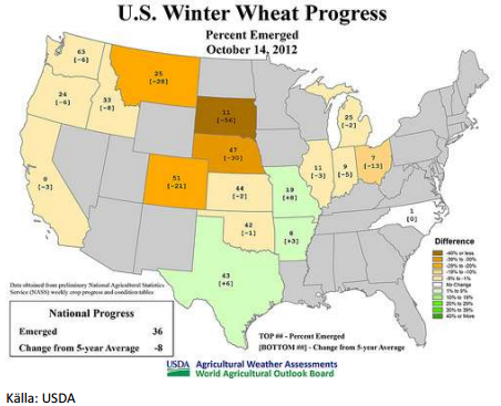 Vintervete - U.S. winter wheat progress