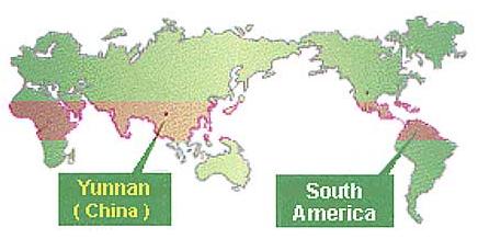 Världskarta, Yunnan i Kina och Sydamerika