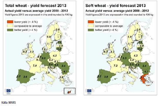Veteprognoser, odling i Europa