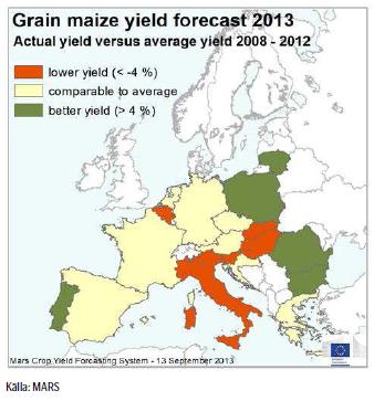 Yield-prognos för majs i Europa