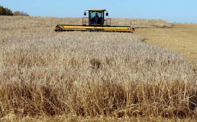 jordbruk-kanada.jpg